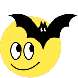 DayRadar sun and bat icon